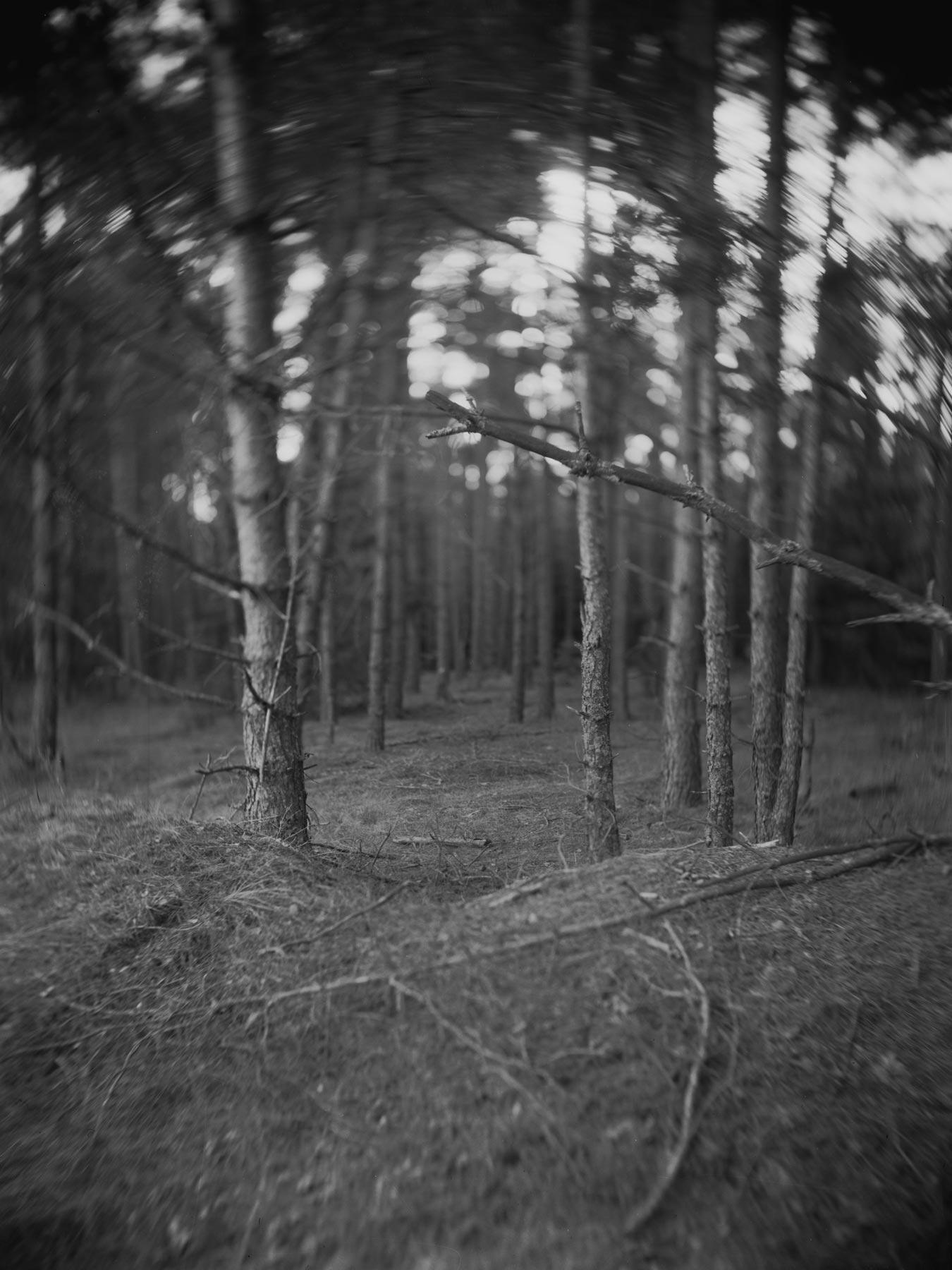 Still/Film