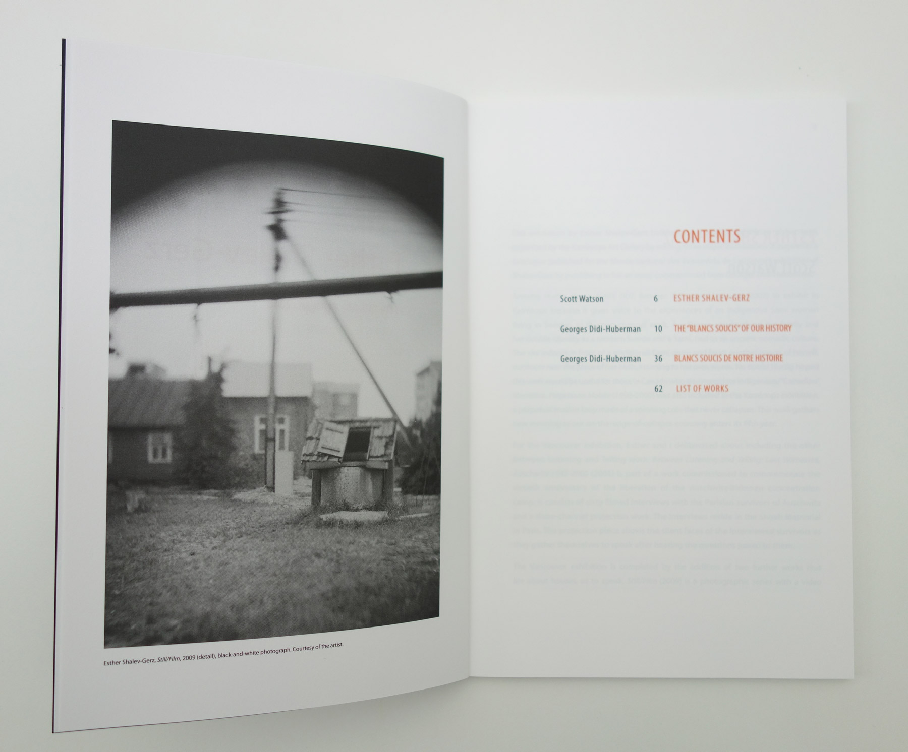 Esther Shalev-Gerz, Belkin Art Gallery