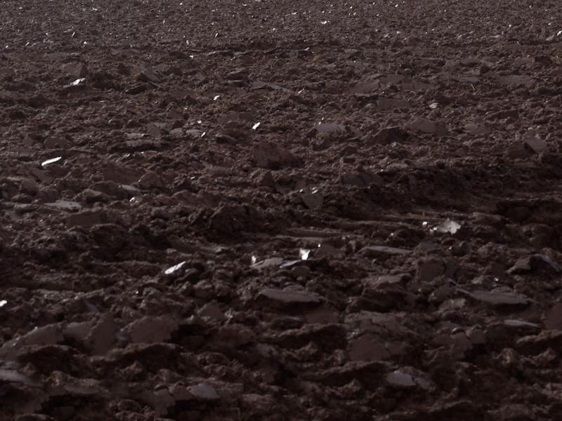 Earth 1-Screenshot-lighter-beginning